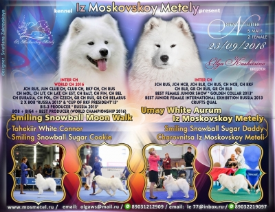 Umay White Aurum iz Moskovskoy Metely x Smiling Snowball Moon Walk